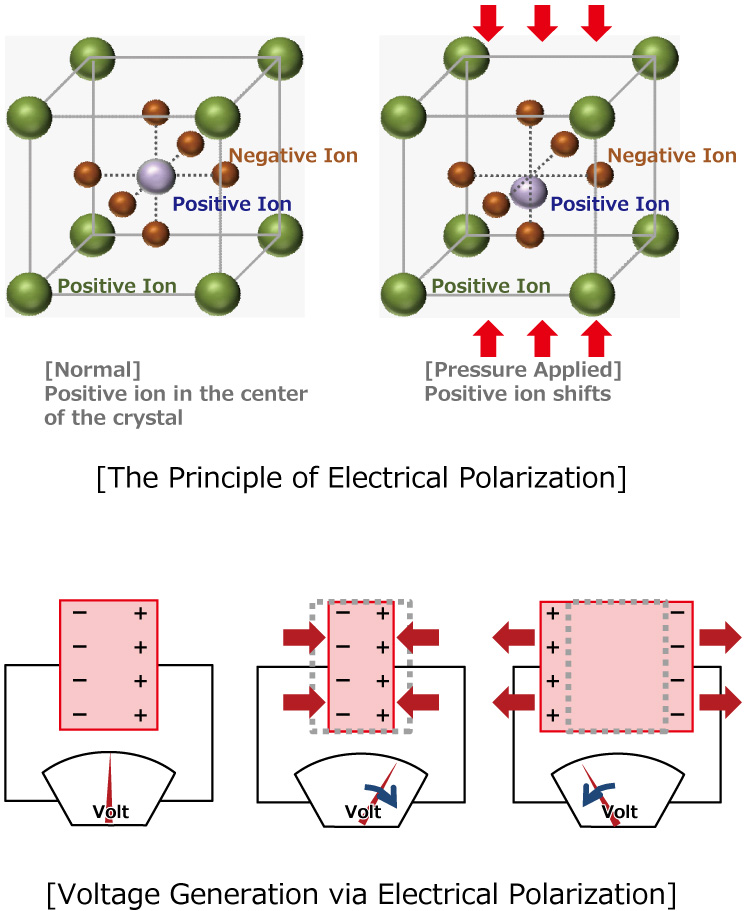 [The Principle of Electrical Polarization] / [Voltage Generation via Electrical Polarization]